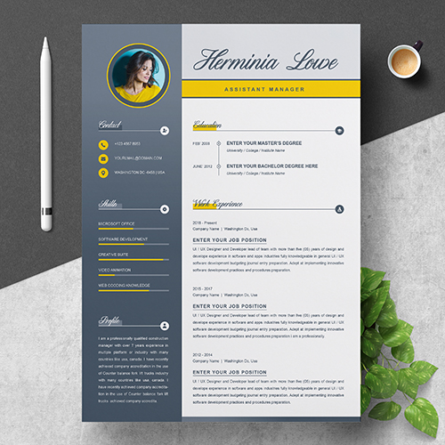 Assistance Manager resume template