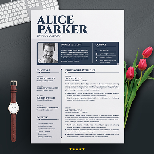 Software developer CV template