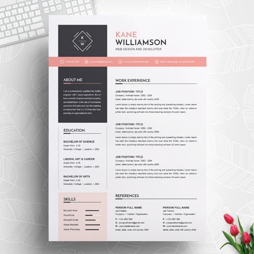 Junior front end developer resume