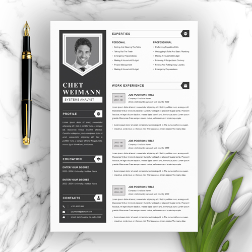 Senior System Analyst Resume Template