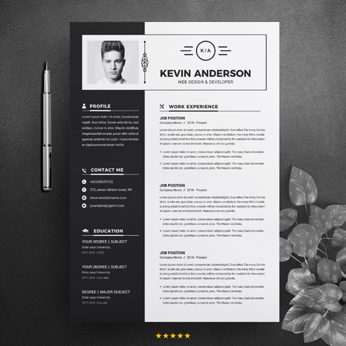 developer sample resume
