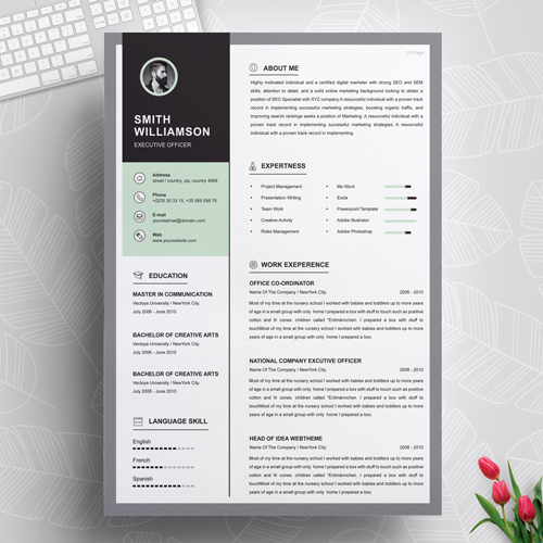 Professional Executive Officer Resume Template