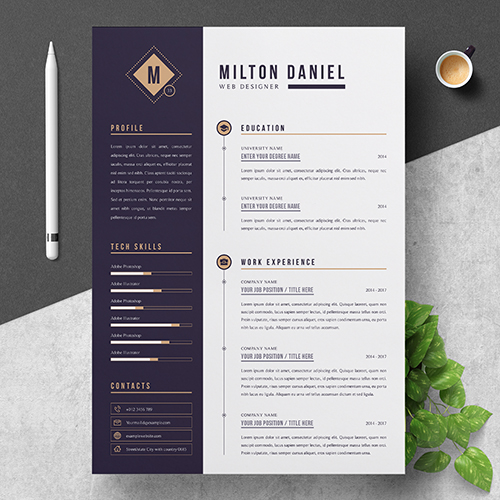Junior Web Designer Resume Template