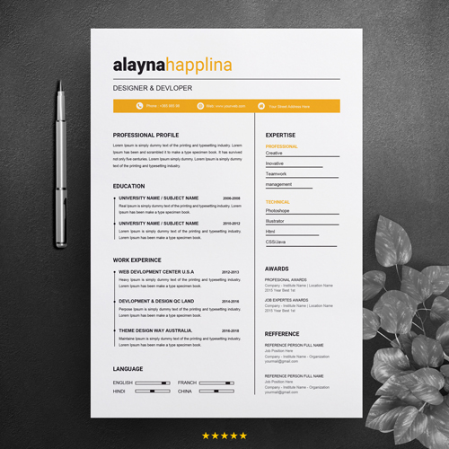 Front End Developer CV