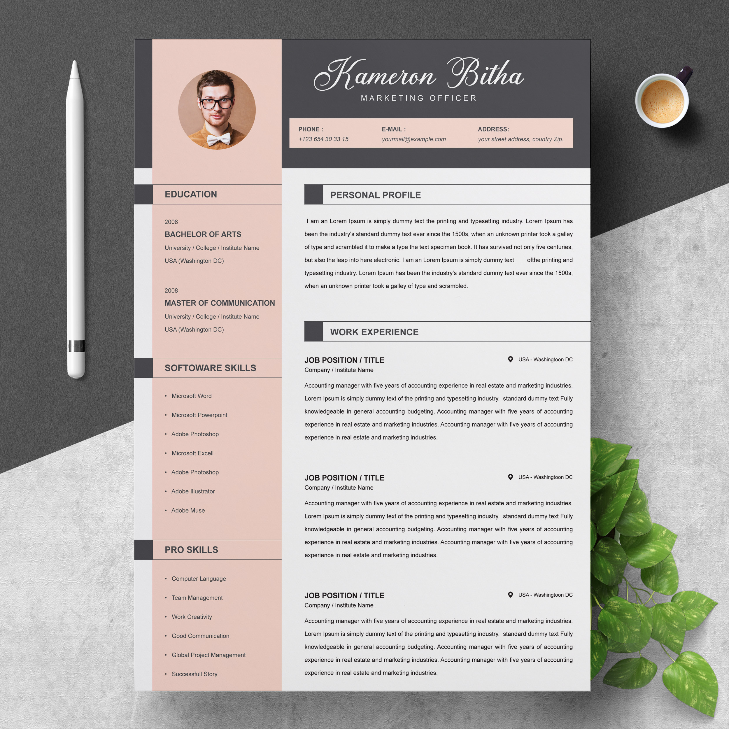 Marketing Officer Resume Template