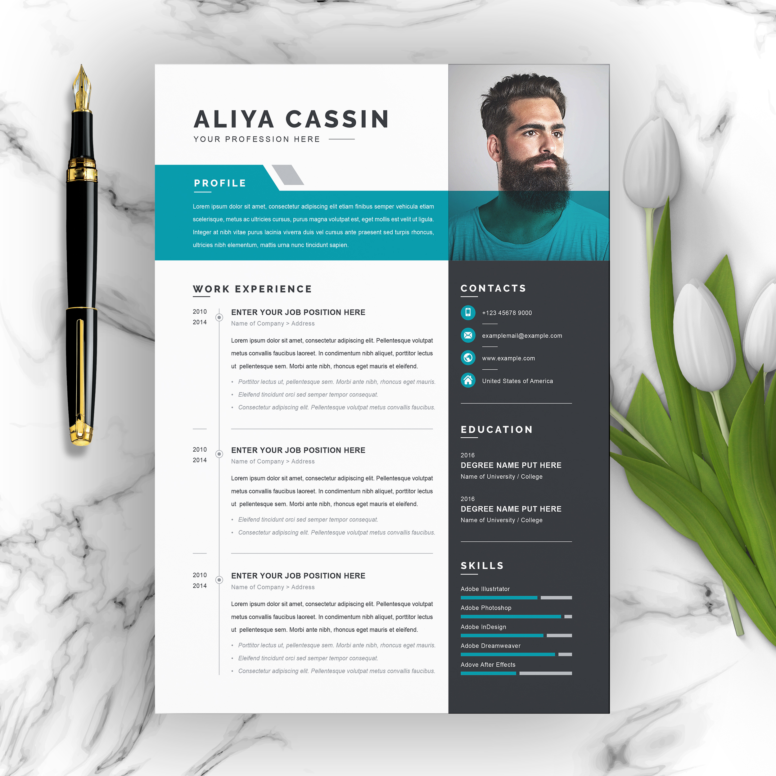 Free Resume Templates With Multiple File Formats Resumeinventor