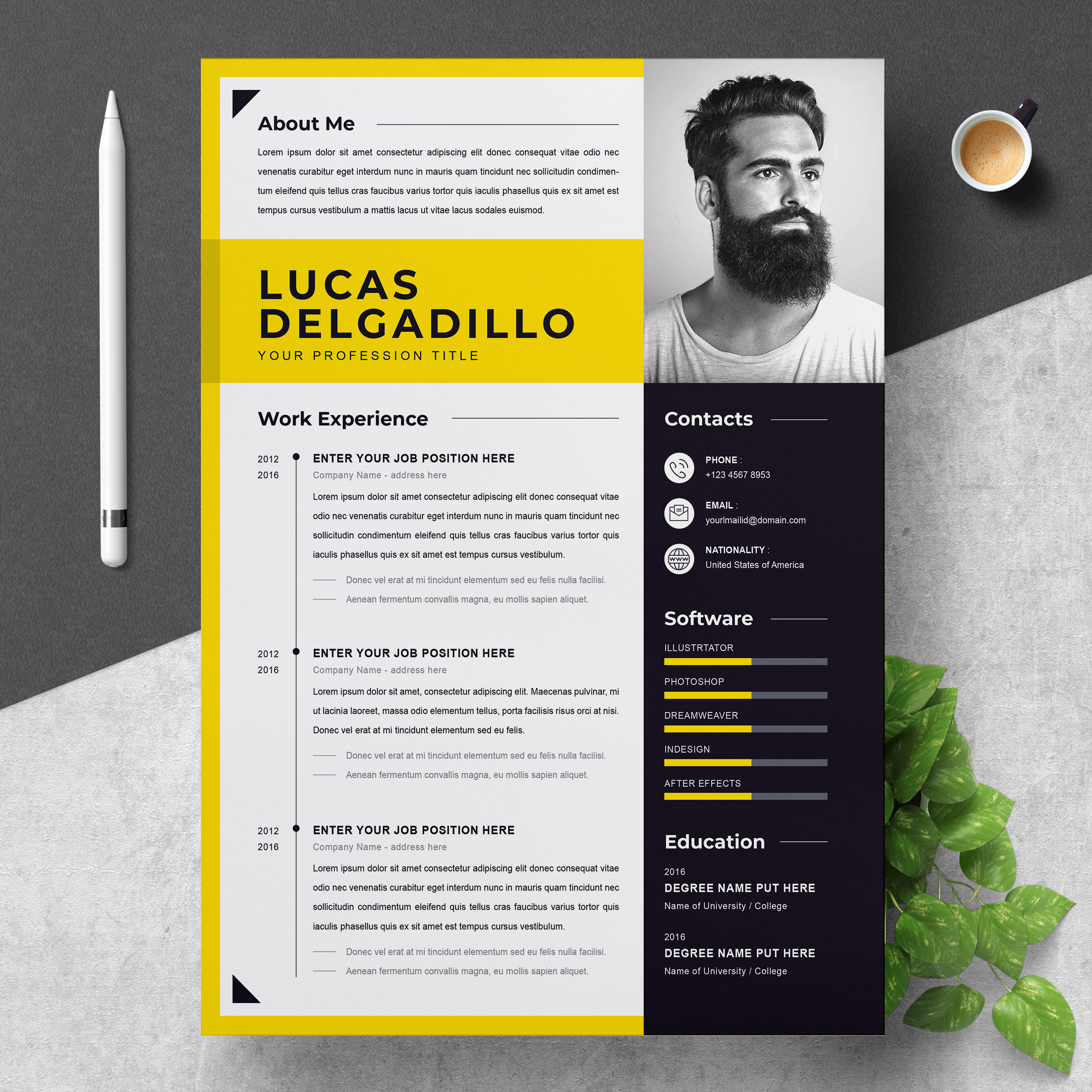 Best Minimal Resume Template 2021