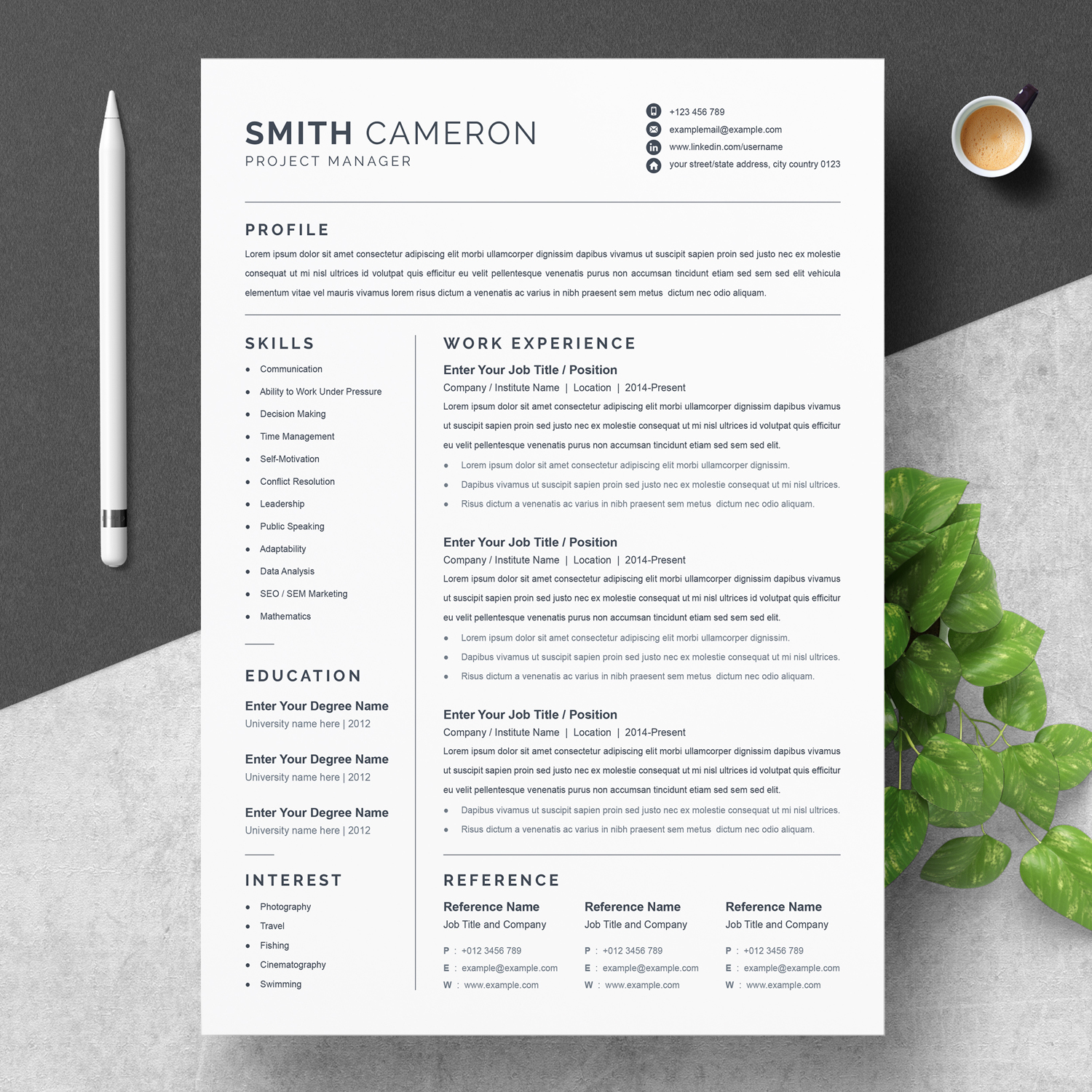 Project Manager Resume 2021