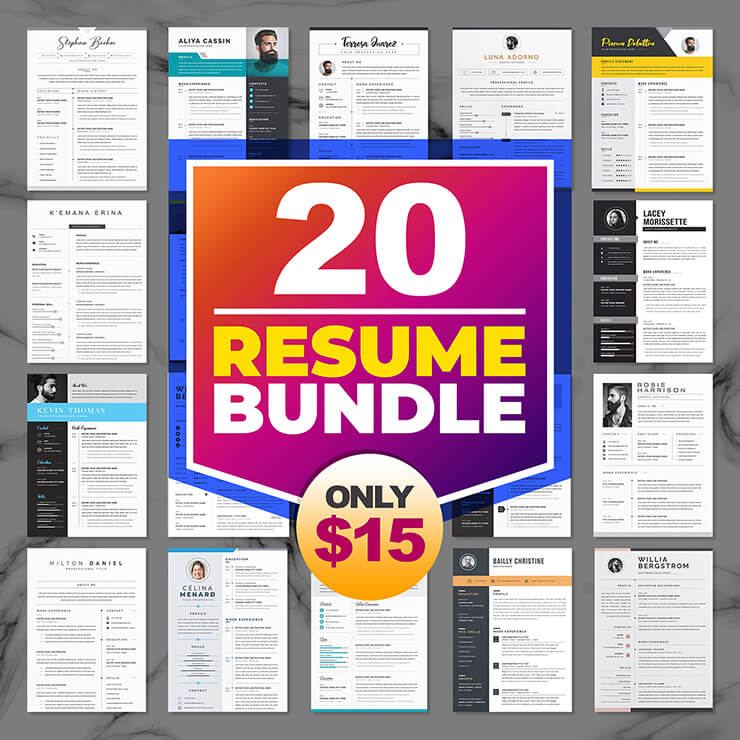 cv template bundle 2021