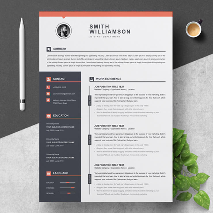 Professional Assistant Department Resume Template