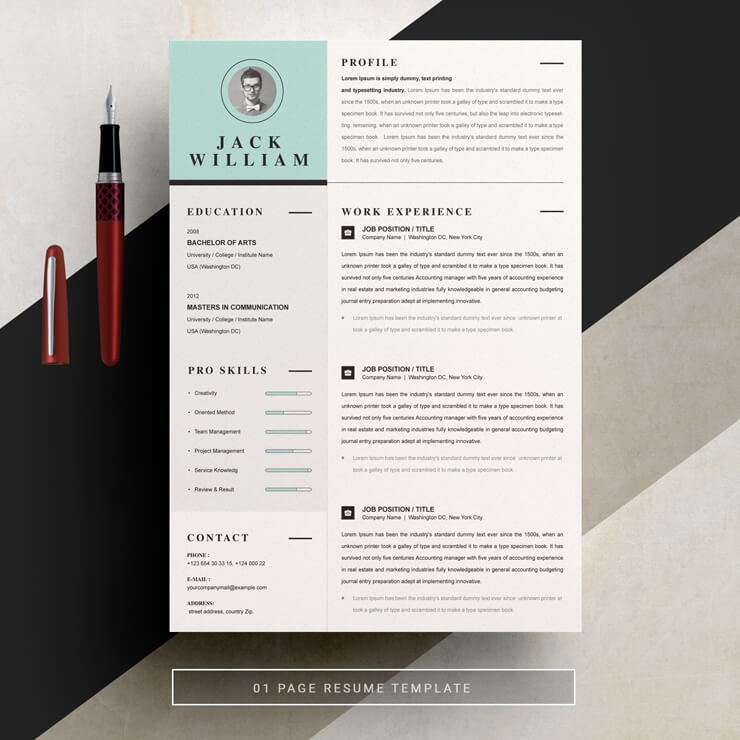 Clean Resume Template 2021