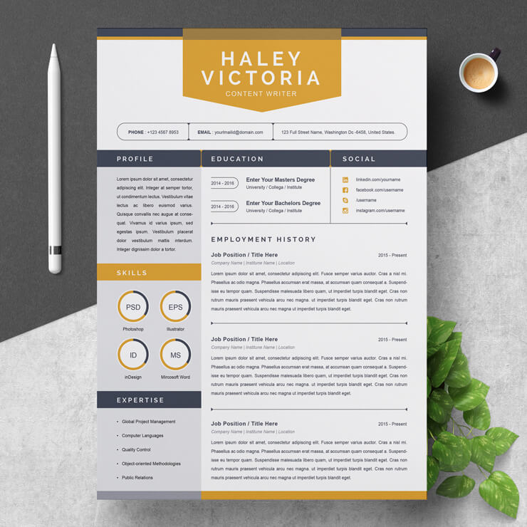 Beginner Content Writer Resume Template