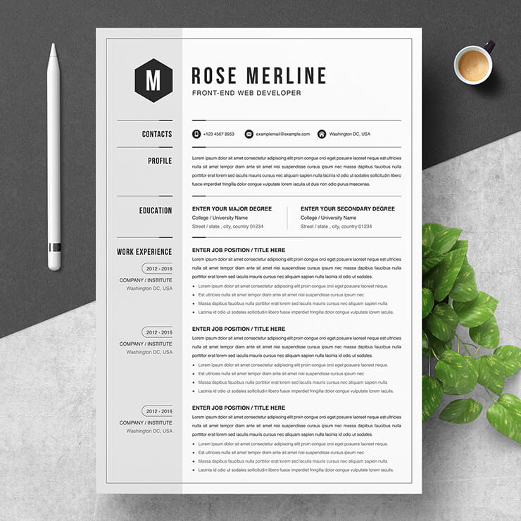 Developer CV Templates 2021