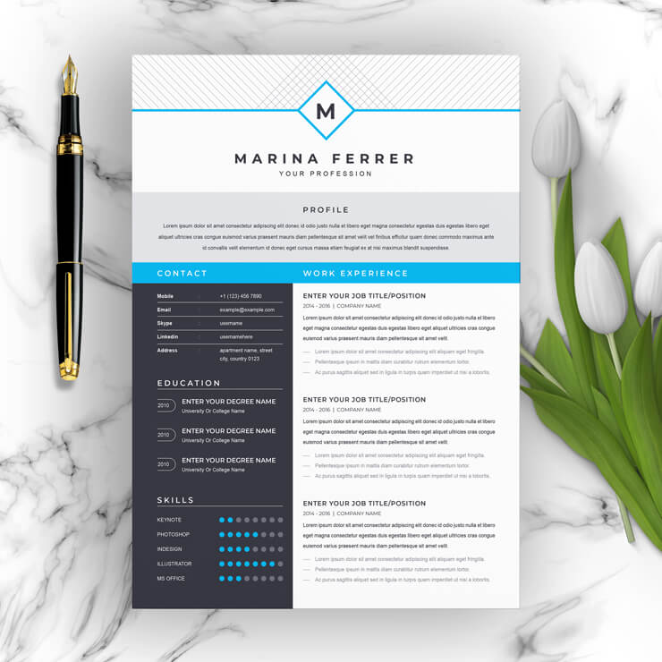 Executive Resume Template 202