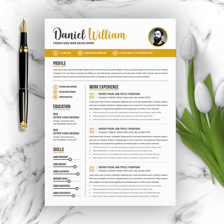 Developer Resume Template 2021