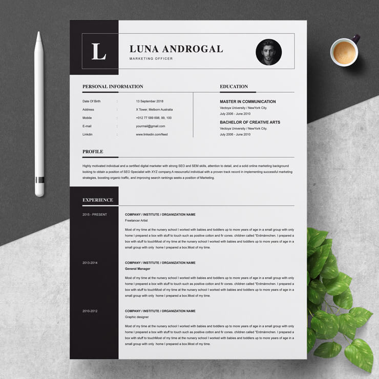 Professional Marketing Officer Resume Template