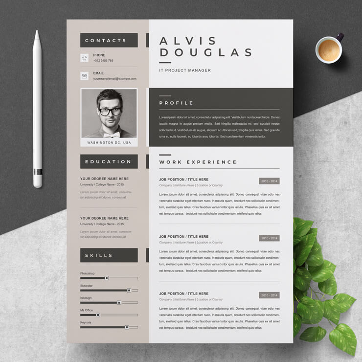 Curriculum Vitae IT Manager template