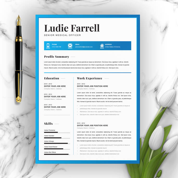 Senior Medical Officer Resume Template