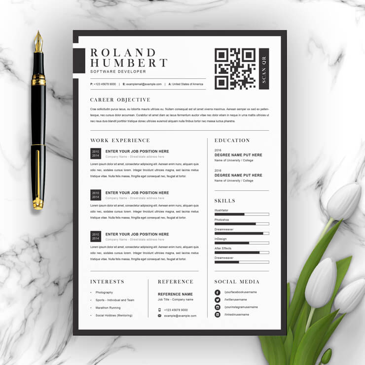 Developer curriculum vitae template