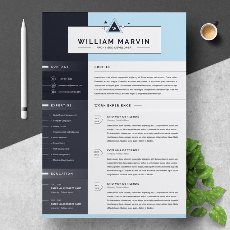 Full Stack Developer Resume Template