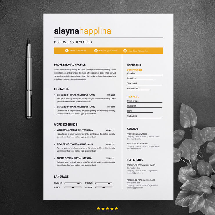 Professional Front End Developer CV template