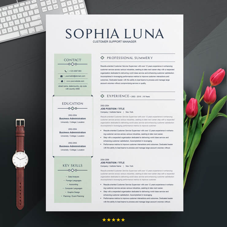 Customer Service Executive Resume Template.
