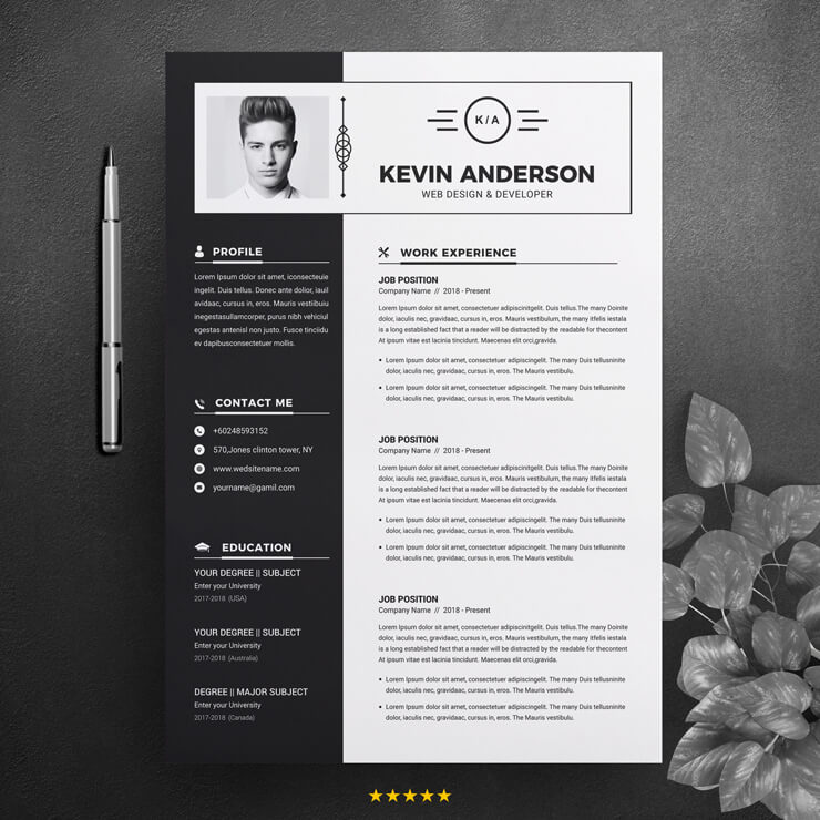 Black White Developer Sample Resume