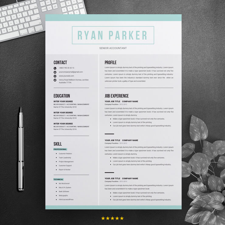 Senior Accountant CV Template