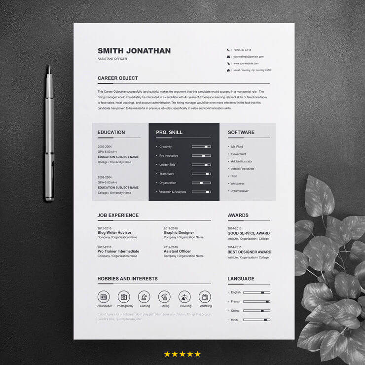 assistant officer resume template