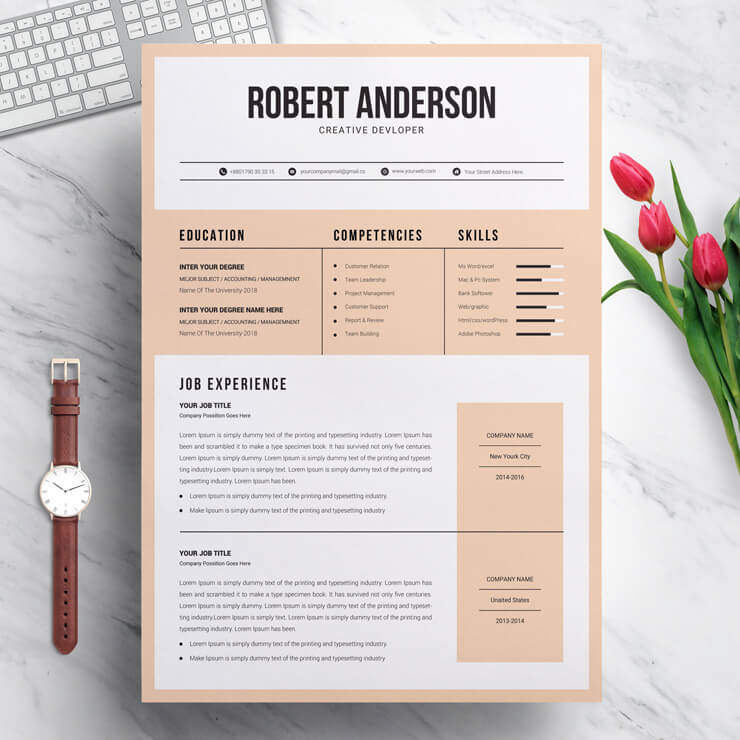 Creative Developer Resume Template