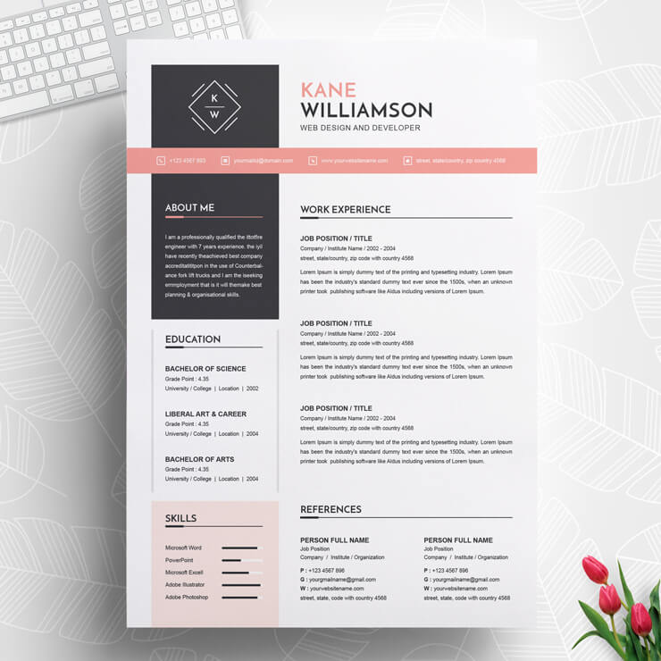 Junior Front End Developer Resume Template