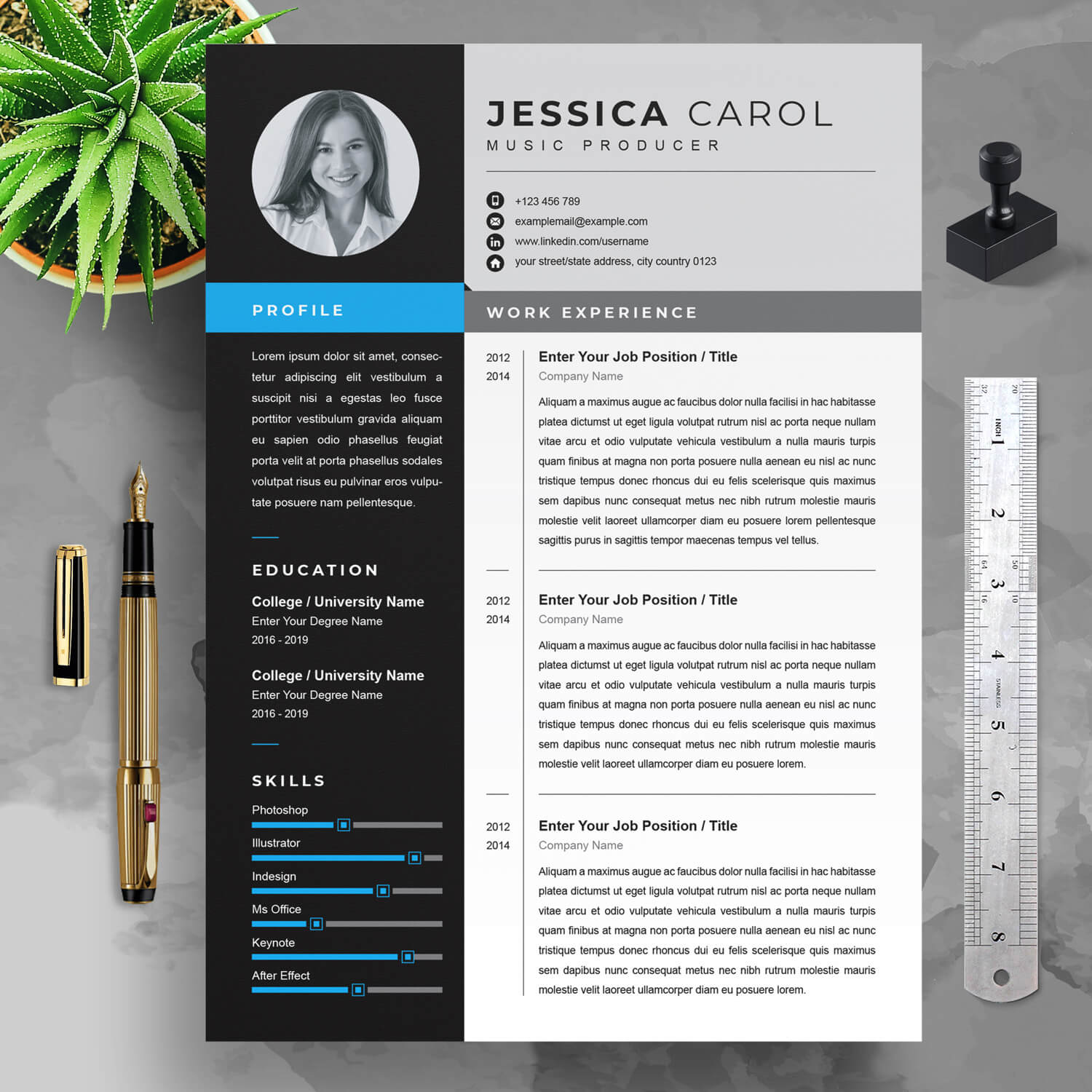 Music Producer Resume Template