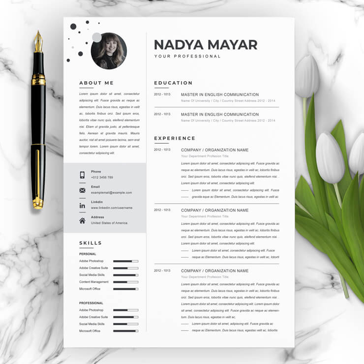 Latest Clean Resume Template