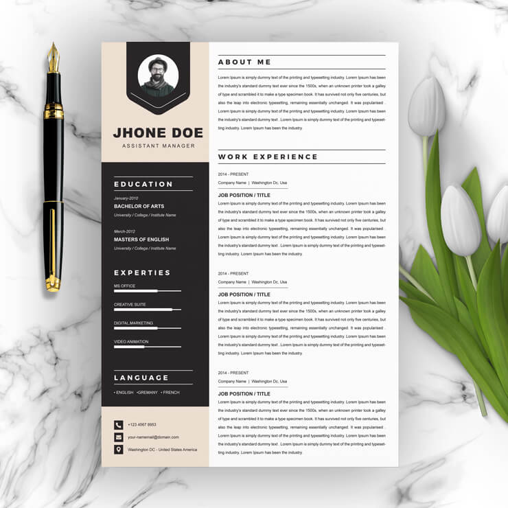 Assistant Manager CV Template