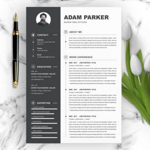 Marketing Manager CV Template Word.